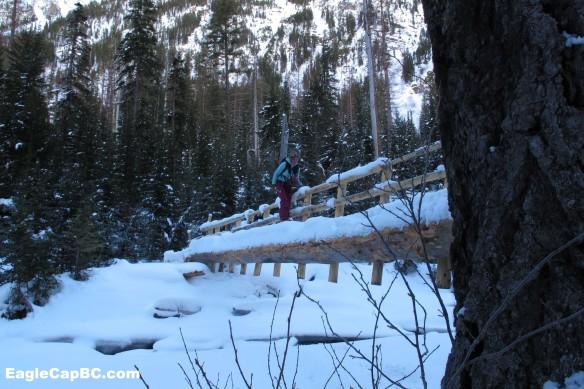 Emily skins across the bridge she helped build last summer
