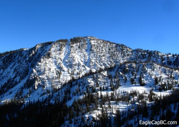 Peak 8620'. We skied the chute left of center